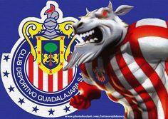 Chivas Rayadas De Guadalajara | Chivas Rayadas de Guadalajara - Taringa!