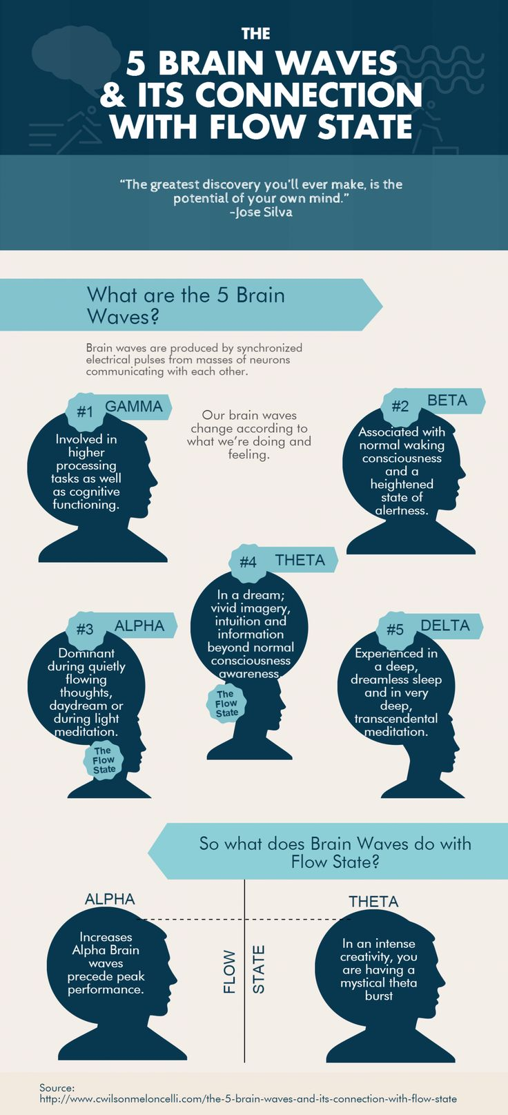 The 5 Brain waves and its Connection with Flow State Infographic