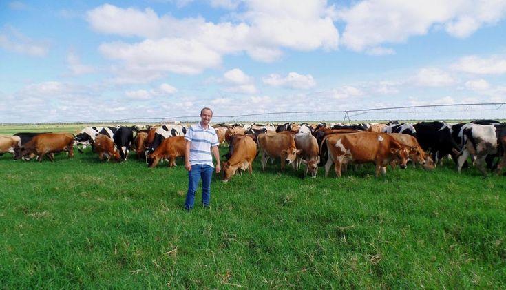 Tekmilk - Agropecuária de leite, laticínios nutrilatte. Sr. Aluísio um médico veterinário compra fazenda leiteira e laticínio (antigo Lactolem) e aposta na industrialização do seu próprio leite (agora laticínios Nutrilatte), a família vende sua propriedade em Santa Catarina e investe no cerrado baiano.      Atuamos em todo o processo de ativação da indústria, plano de trabalho de rentabilidade econômica, formulações que agregasse maior valor ao litro de leite.