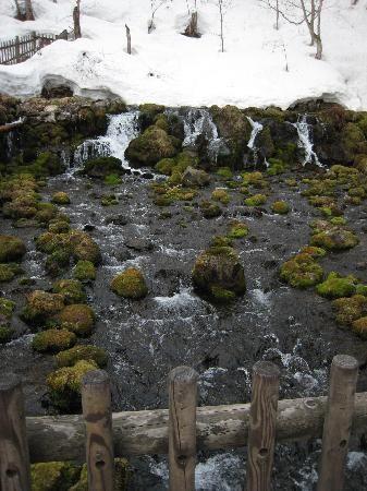 冬のふきだし湧水も美しい。京極町のふきだし公園は羊蹄山の湧き水が出るおすすめスポットです。