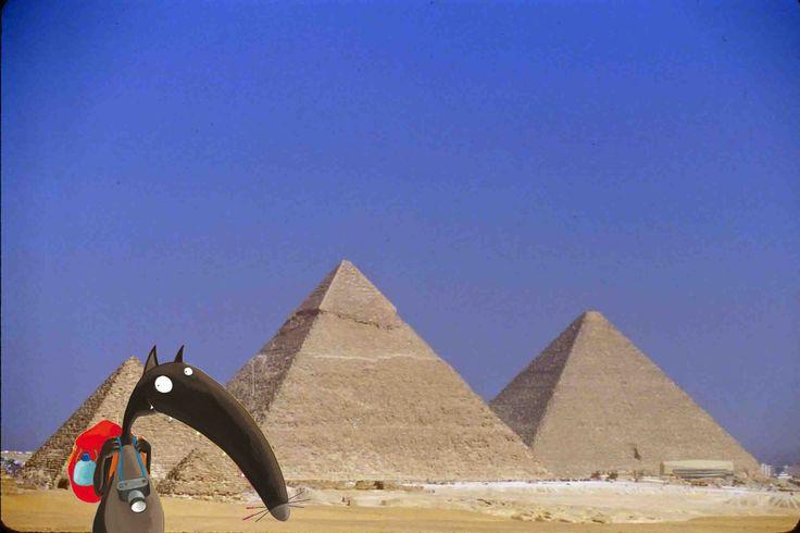 Loup en egypte
