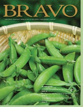 Bravo 2015 - Volume 1
