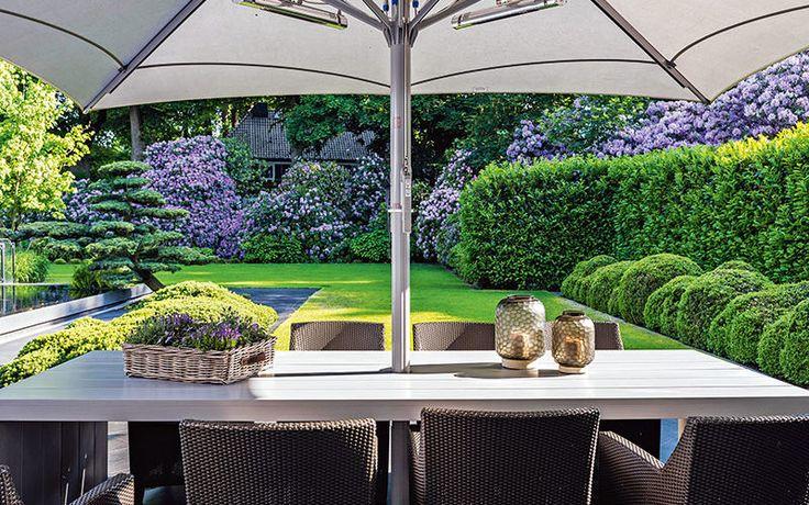 sichtschutz durch gr npflanzen garten pinterest sichtschutz hausrenovierung und g rten. Black Bedroom Furniture Sets. Home Design Ideas