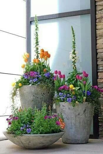 spring in the container