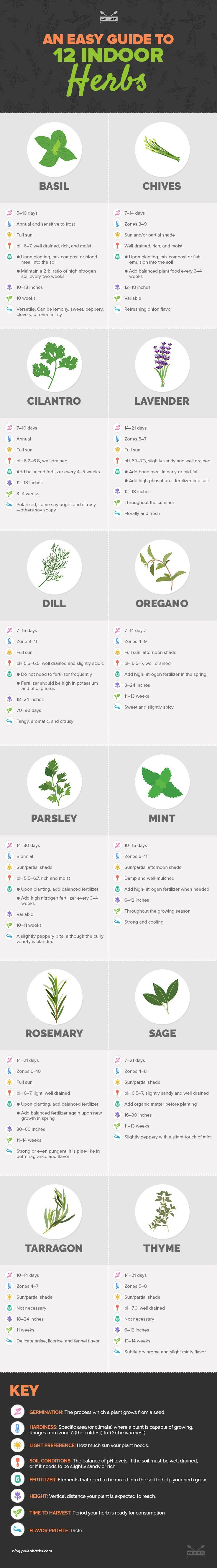 Stay healthy by cooking with your own organic herbs. Here are 12 indoor herbs you can grow yourself and use in healthy cooking. Learn more: BasilHealth at www.basilhealth.com