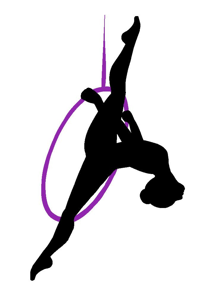 17 Best Images About Lyra On Pinterest Pole Fitness