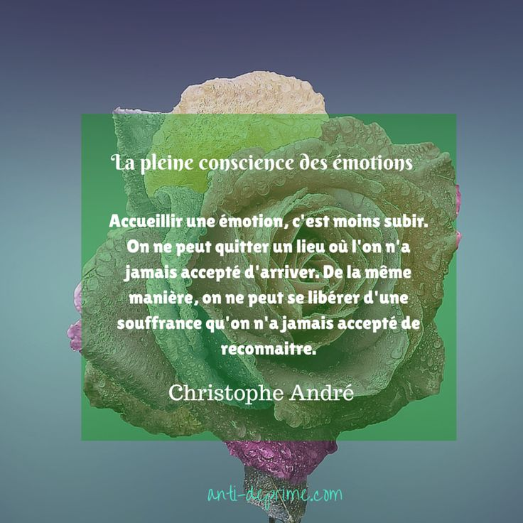 Exercice de pleine conscience autour des émotions ...