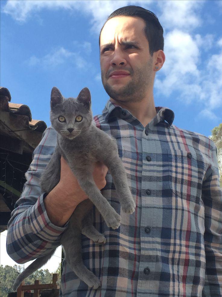 Our new friend Gris. Cat love