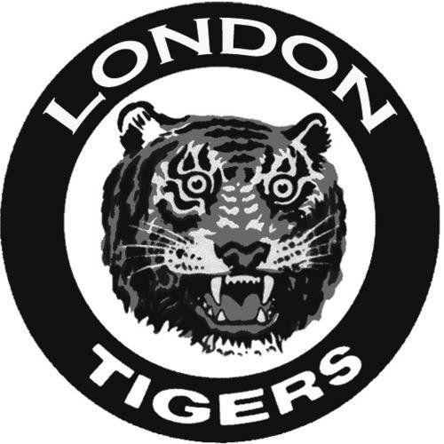 Fan immortalizes London Tigers | Baseball | Sports | The London Free Press