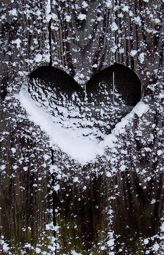 Winter ice heart stock photo. Image of season, love ...   Hearts In Nature Winter