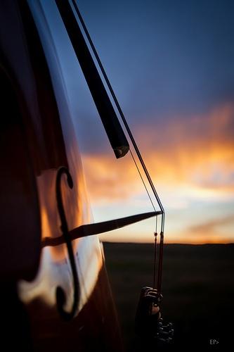 Cello dawn