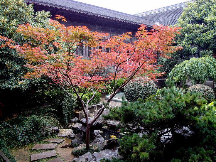 Giardino cinese | Flickr - Photo Sharing!