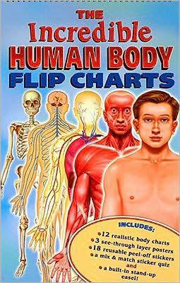 The incredible human body flip charts