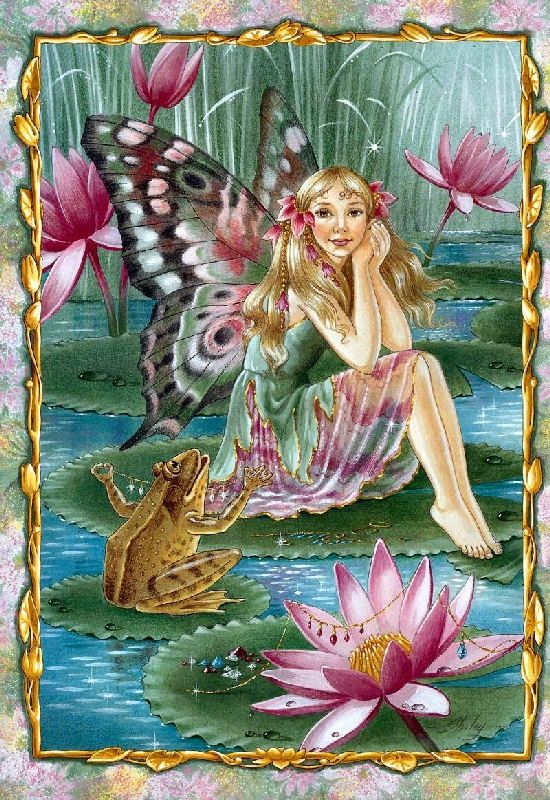 Shirley Barber fairies December Fairy, water lilies / lotus and Frog