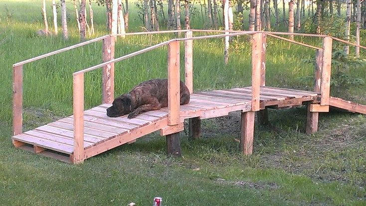 Diy pallet bridge with my baby wizzie | Do it yourself ...