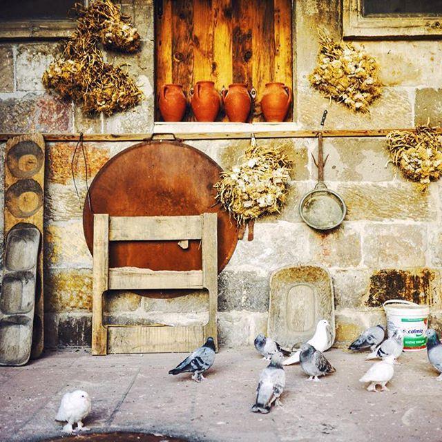 By @mycappadociatrip on Instagram ☆2017/02/28 03:29:12 ☆Cappadocia ☆トルコで鳩はとっても大事にされています🕊🕊🕊#写真撮ってる人と繋がりたい #写真好きな人と繋がりたい #風景 #写真 #海外旅行 #海外 #トルコ#カッパドキア#turkey #cappadocia #vsco #vscocam #amazing #amazingworld #pigeon #peace #cavehotel #instagood #instagram #wonderful #lifewelltravelled