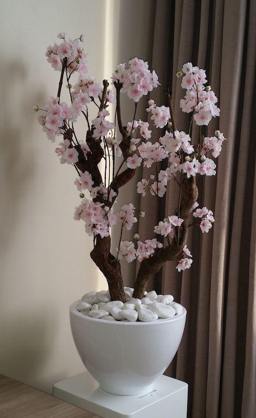 Licht roze bloesemboom