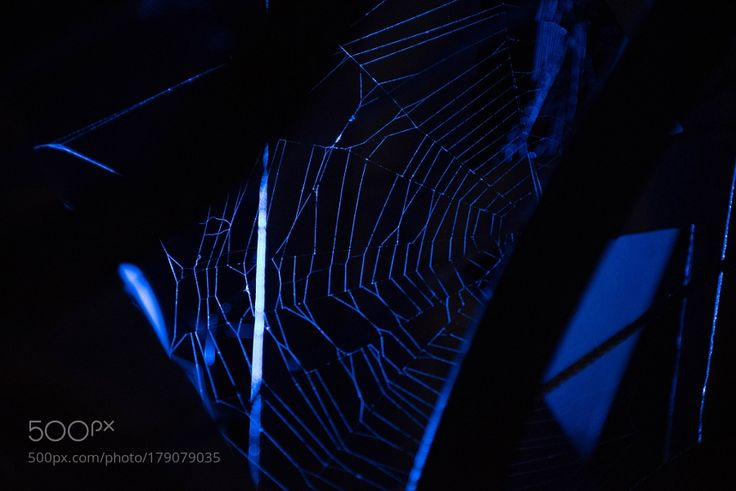 Matlock Spiderweb by RussellWhyman #architecture #building #architexture #city #buildings #skyscraper #urban #design #minimal #cities #town #street #art #arts #architecturelovers #abstract #photooftheday #amazing #picoftheday