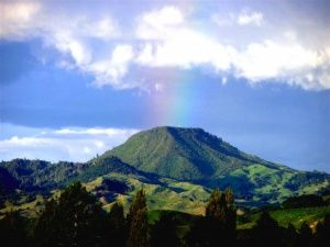 Indigenous people from the Ngati Porou tribe regard this mountain as a sacred piece of land. Take a hike (or tramp) to the peak of Mt. Hikurangi.