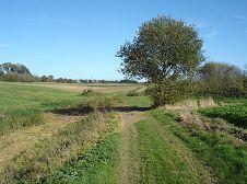 Les chemins et sentiers de la région Namuroise