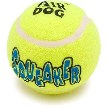 All you need in life is a squeaky tennis ball.  www.petco.com