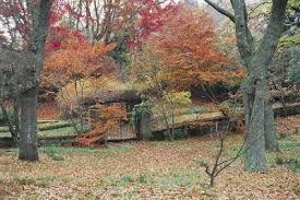 Image result for country garden australia