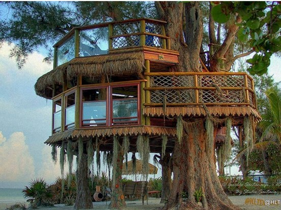 815 best tree houses images on pinterest for Treeless treehouse