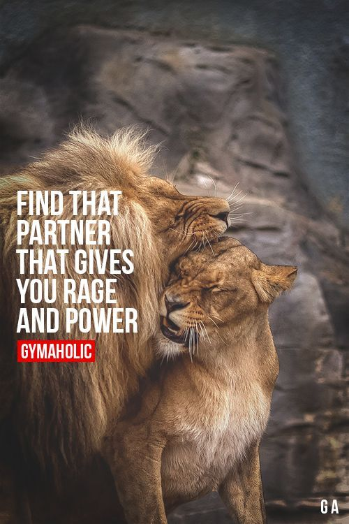 Find That Partner That Gives You Rage And Power He/She will help you achieve your goals. http://www.gymaholic.co