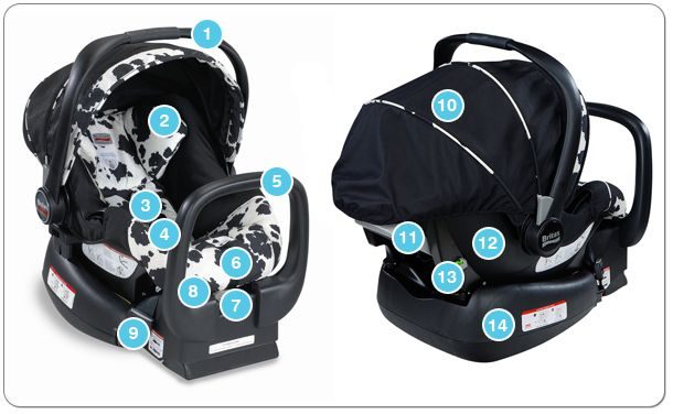 Anatomy Of An Infant Car Seat Learn About All The Parts