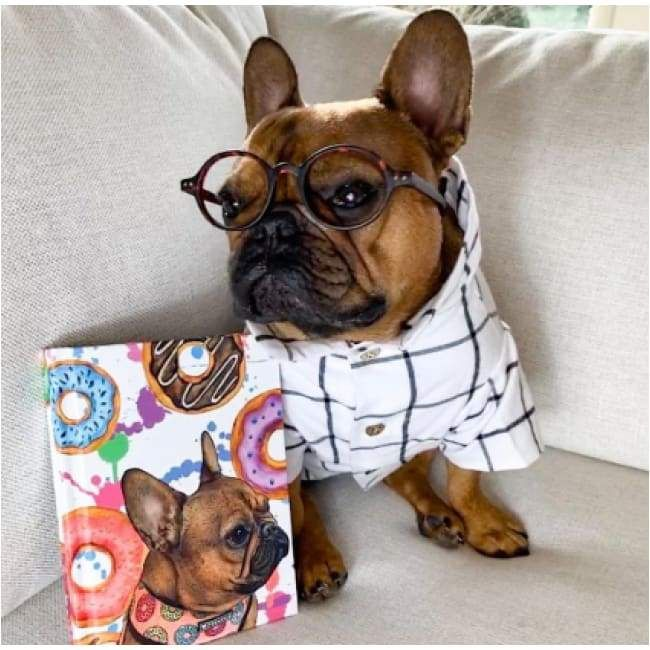 Commuter Flannel Dog Shirt With Images Dog Shirt Dogs Dog Clothes