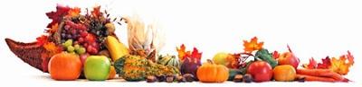 Gluten Free Spinner: Thanksgiving Ideas