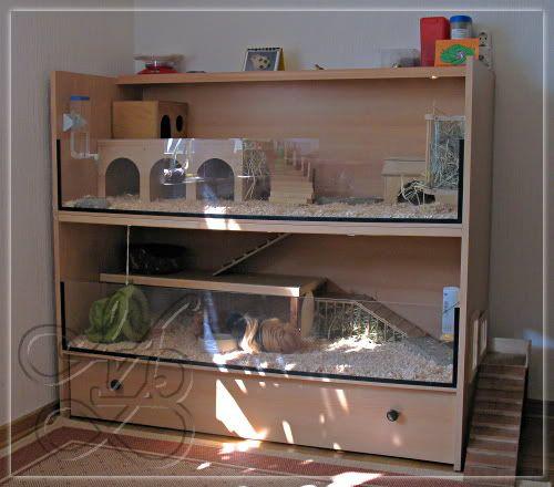 die besten 25 meerschweinchen k fig ideen auf pinterest. Black Bedroom Furniture Sets. Home Design Ideas