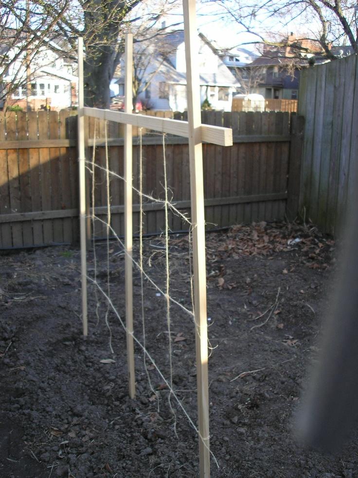 1000 images about garden trellis ideas on pinterest for Garden trellis ideas