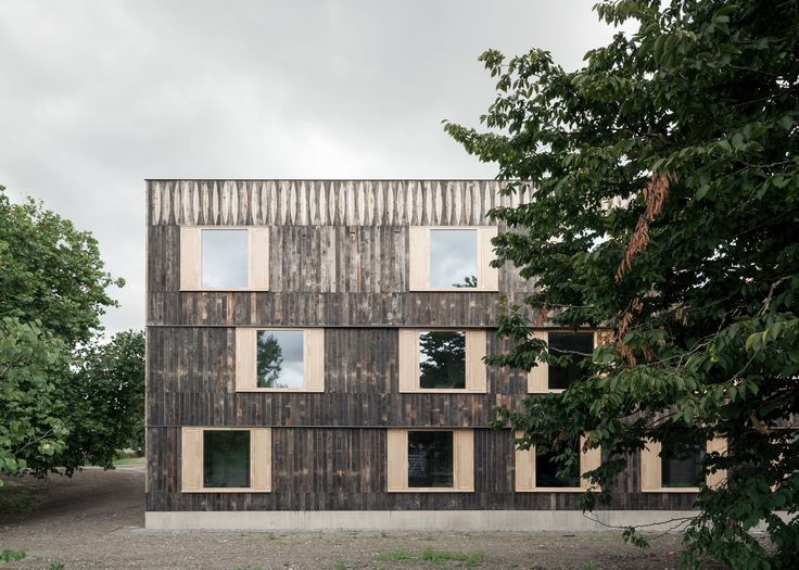 Is 6a Architects' Cowan Court really timber Brutalism? | Building | Architects Journal