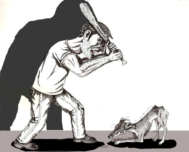 Contracorriente: Maltrato animal