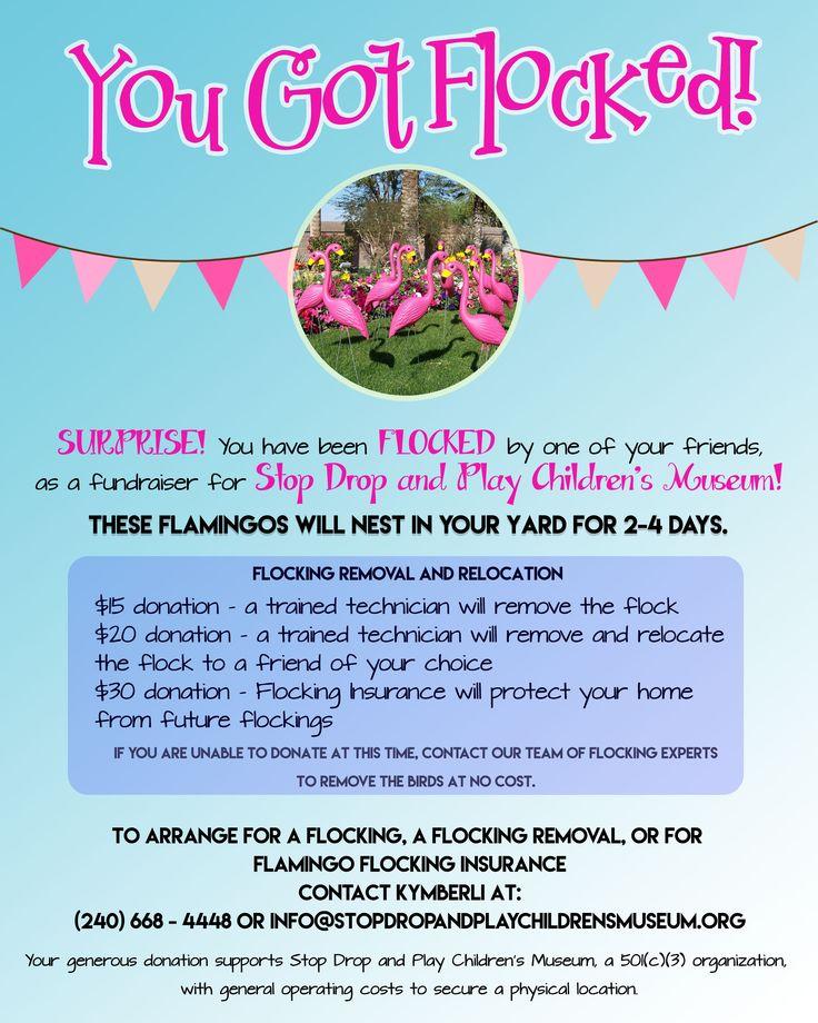 Flamingo flocking fundraiser!