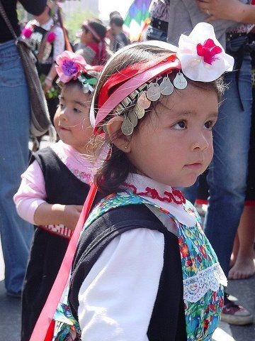 Mapuche children are indigenous to central/southern Chile and southwest Argentina