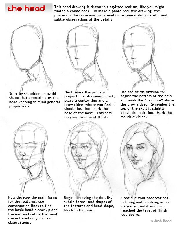 Drawsh : head drawing step by step
