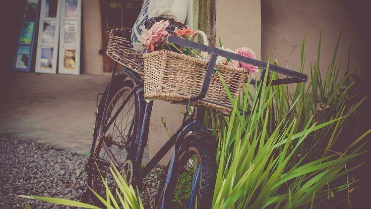 Rower, Kwiaty, Sklep, Rocznika Rower, Koszyk, Vintage