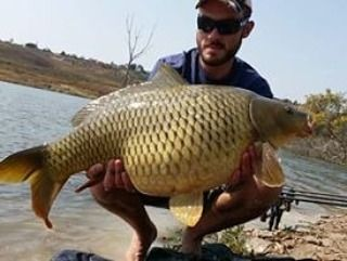 Divan Potgieter (@carp_quest) | There we go the perfect way to start Fat Fish Friday, with a Fat Fish!!!! #fatfishfriday  #carplife  #divanpotgieter  #theurbananglersa