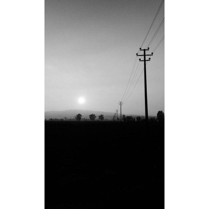 Electricity 🔆 #electricity #sun #bw #foggy #foggyday #cold #autumn (presso Niviano)