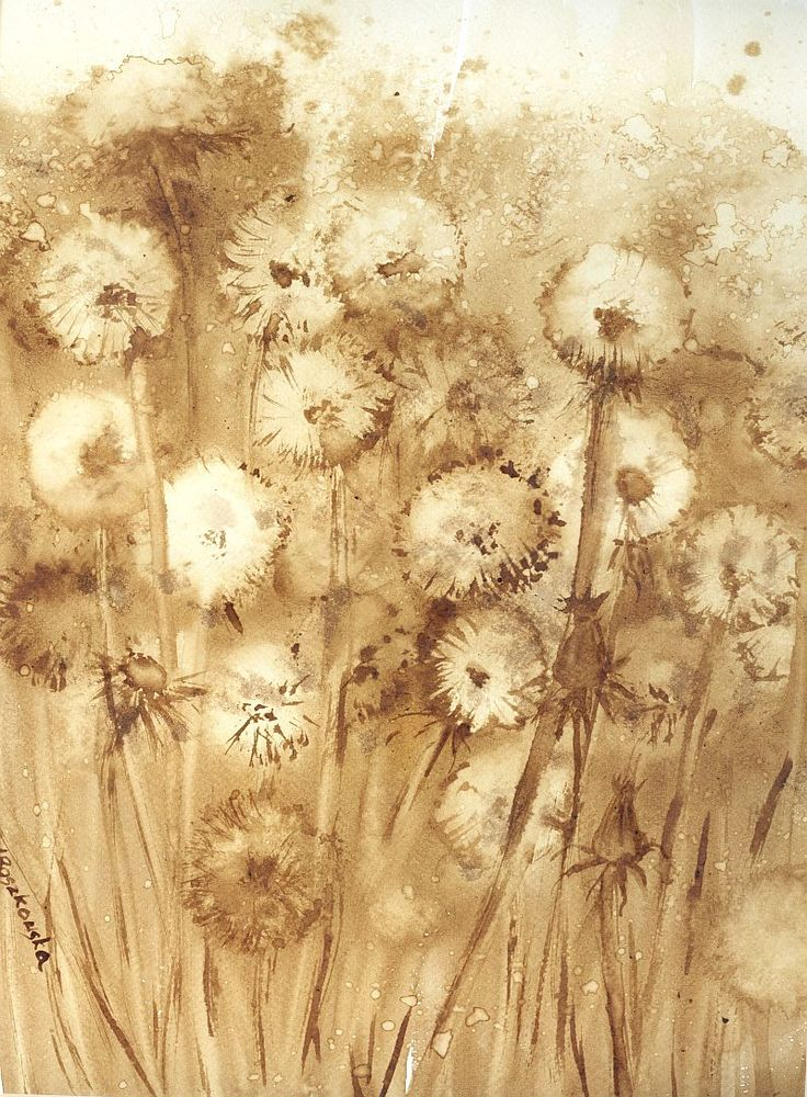 Dmuchawce -  watercolour painted with coffee  http://www.artmarylacoffee.pl/