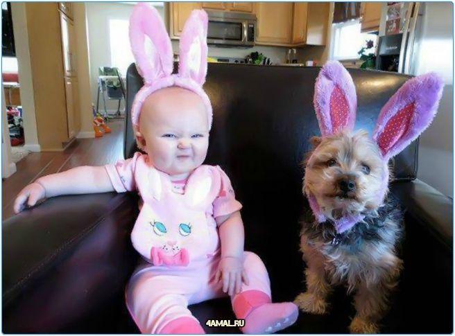 Немного юмора и хороших фотографий к вечеру вторника  #россия #юмор #животные #собаки #собака #дети #kids #dog #dogs #animal #animals #russia #humor