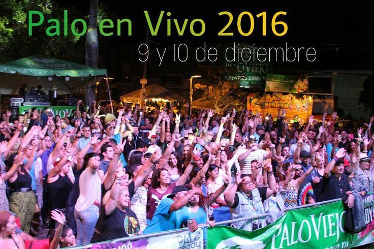 Palo en Vivo 2016 #sondeaquipr #paloenvivo #placitaroosevelt #hatorey #sanjuan