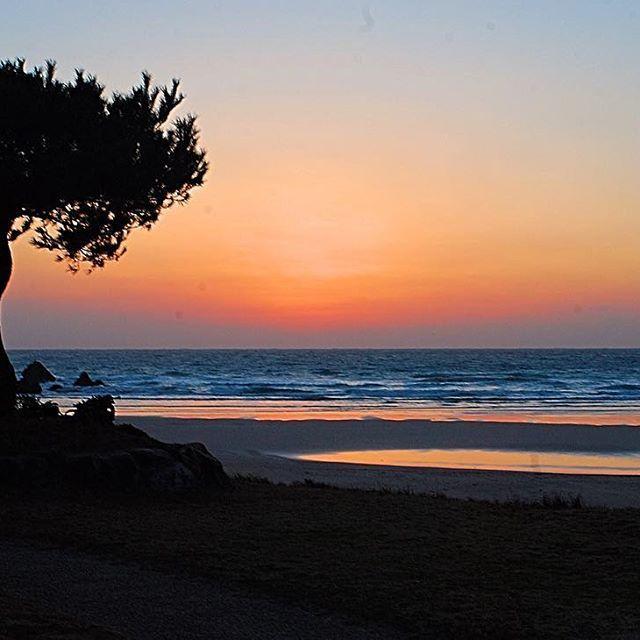 【_haruharuharu_】さんのInstagramをピンしています。 《👯♂️👯♂️👯♂️ 今日の  夕暮れ サーフィン 😂  腰 〜 腹😂 たまーに 胸 😂🤘 時々 いい波 来るのに😂  ナゼ か 腰 痛すぎて 😭  テイクオフ  出来なかったよねー😂  五島列島 サーフィン 最高かよ😂 💋  #トキメキが止まらない 😂 😂  #surfpic#五島列島#五島サーフィン#福江島#高浜#サーフィン#surfing#サーフ#surf#水遊び#海#波乗り#横乗り#サーファー#surfer#ビーチ#beach#wave#波#optrix#sunset#instasize#instaphoto#instagood#instapic#follow4follow#yolo#enjoy》