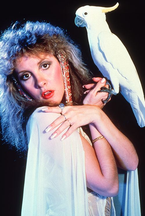 "Bella Donna album cover outtake. ""I dreamed only about giving a little fairy tale to people. That's what the outfit is on my album cover, that's what that bird is.""  Stevie Nicks, 1981.  HQ copy: {x}"