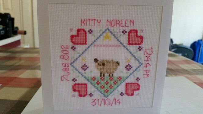 Cross stitch birth record