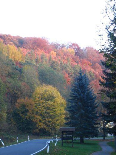 Rastenberger Herbst