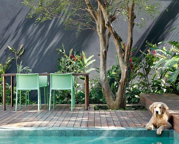 Revista AD http://www.revistaad.es/ Fotografía MCA STUDIO terrazas, perros, decoración valencia, sillas