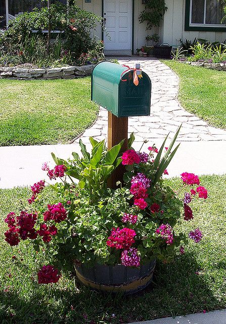 Mailbox with geraniums in whiskey barrel.  This is so pretty.  Nice for everyone who passes by.